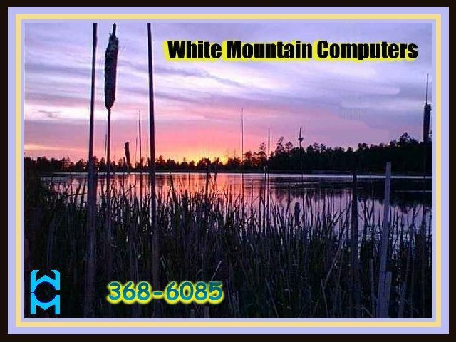 White Mountains Online